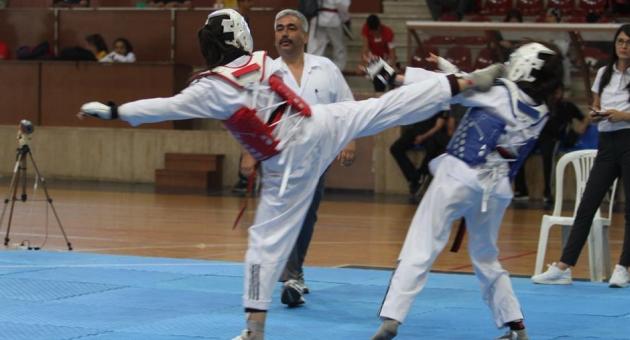 Türkiye Tekvando Şampiyonası Son Erdi