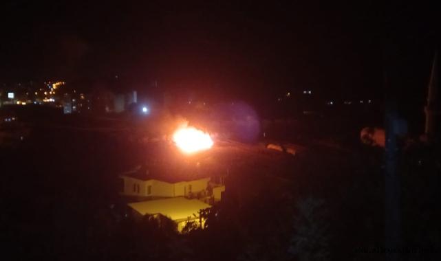Alanya'da çalılık yangını korkuttu