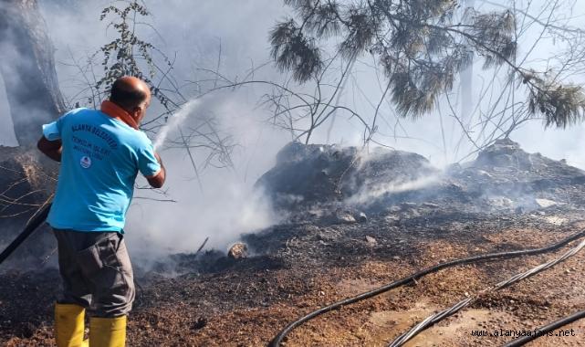 Alanya'da korkutan yangın söndürüldü