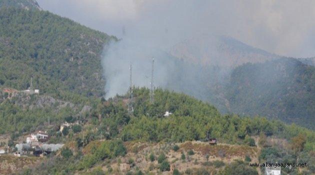 Alanya'da yangın paniği! Kısa sürede söndürüldü