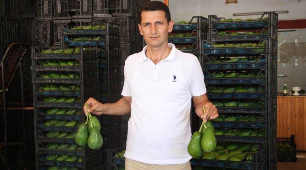 Bulgarlarda Alanya'yı Tercih Etti