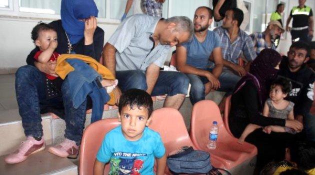 Suriyeli 149 Kaçak, Koyda Kaldı