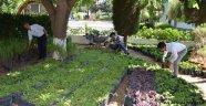 Büyükşehir mezarlıklarda ücretsiz çiçek dağıtıak