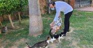 Alanya AK Gençlik sokak hayvanlarını unutmadı