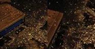 Alanya'da ilginç görüntü! Balıklar kıyıya vurdu