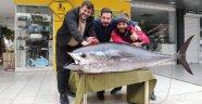Alanya'da oltaya 85 kiloluk orkinos takıldı