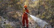 Alanya'da yangın: 5 dönümlük arazi zarar gördü