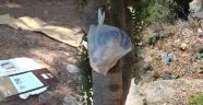 Kale çöplere ev sahipliği yapıyor