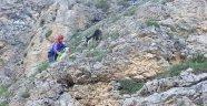 Kayalıkta Mahsur Kalan Keçiyi AKUT Kurtardı