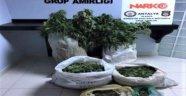 Polisten 2 ayrı uyuşturucu operasyonu