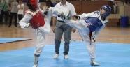Taekwondo'nun Yıldızları Alanya'da