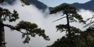 Alanya'dan Muhteşem Manzaralar